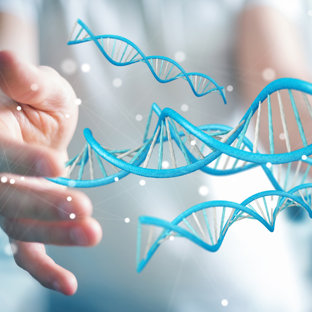 Gen-Diät Wissenschaftlich belegt